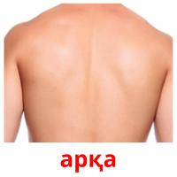арқа picture flashcards