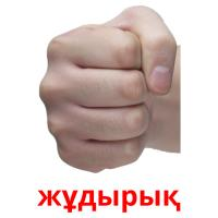 жұдырық picture flashcards