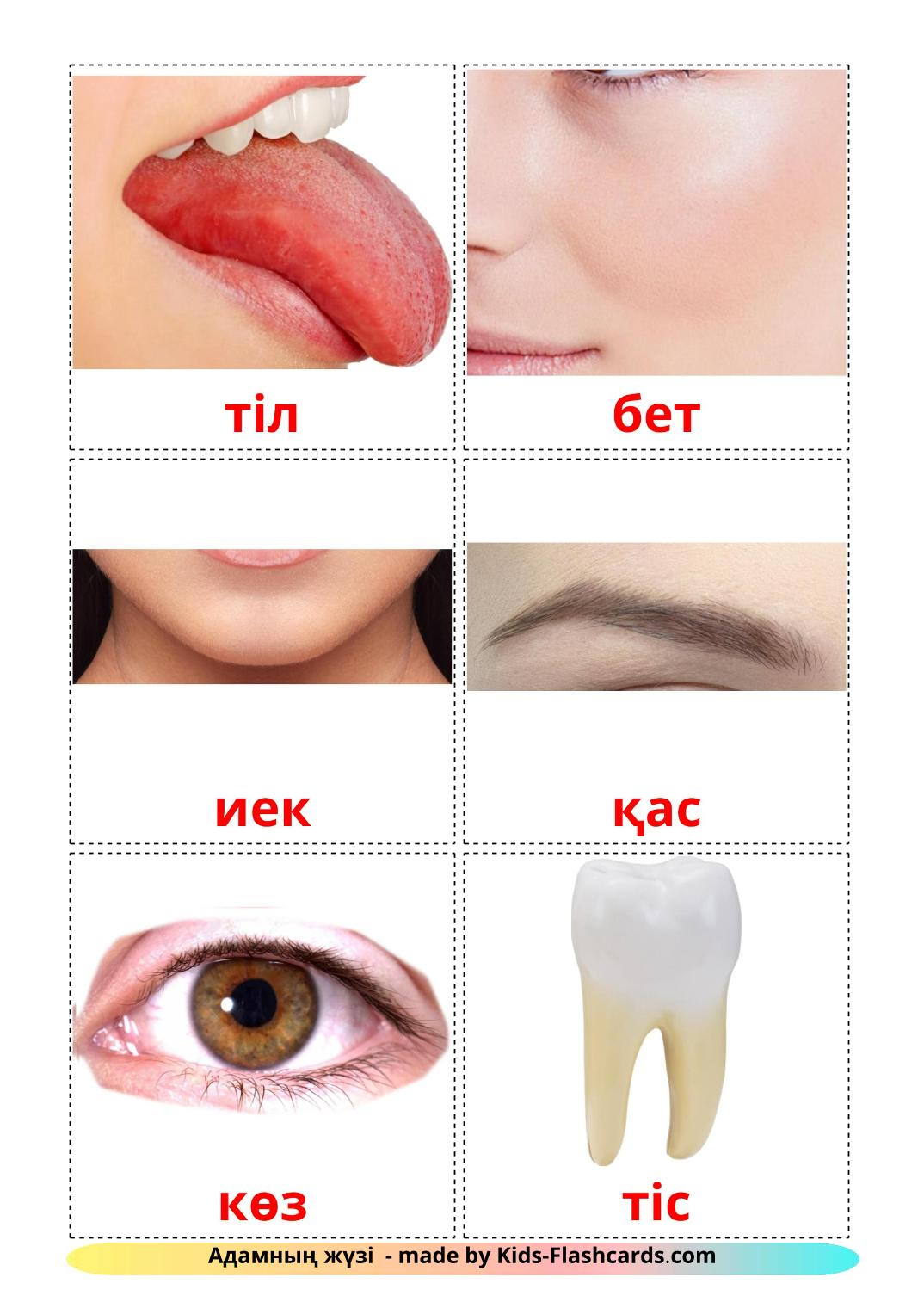 Face - 20 Free Printable kazakh Flashcards