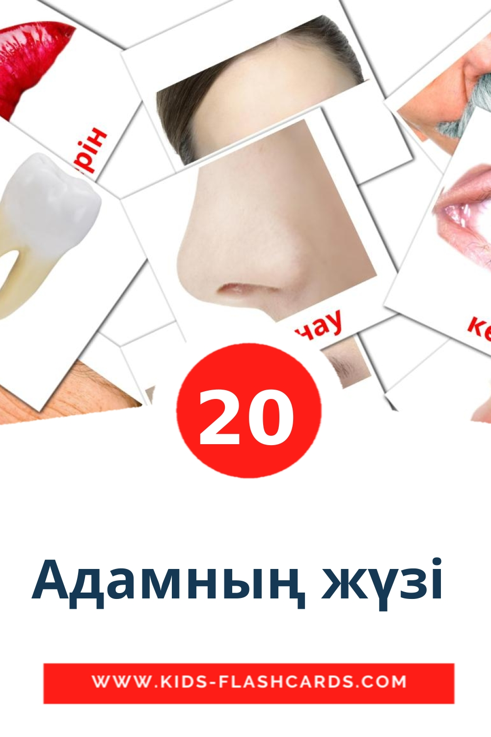 20 Адамның жүзі  Picture Cards for Kindergarden in kazakh