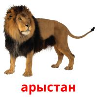арыстан picture flashcards