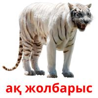 ақ жолбарыс picture flashcards