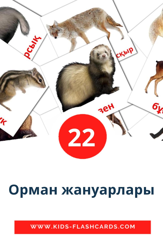 22 Орман жануарлары Picture Cards for Kindergarden in kazakh