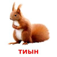 тиын picture flashcards