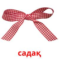 садақ picture flashcards