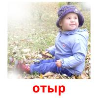 отыр picture flashcards