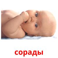 сорады picture flashcards