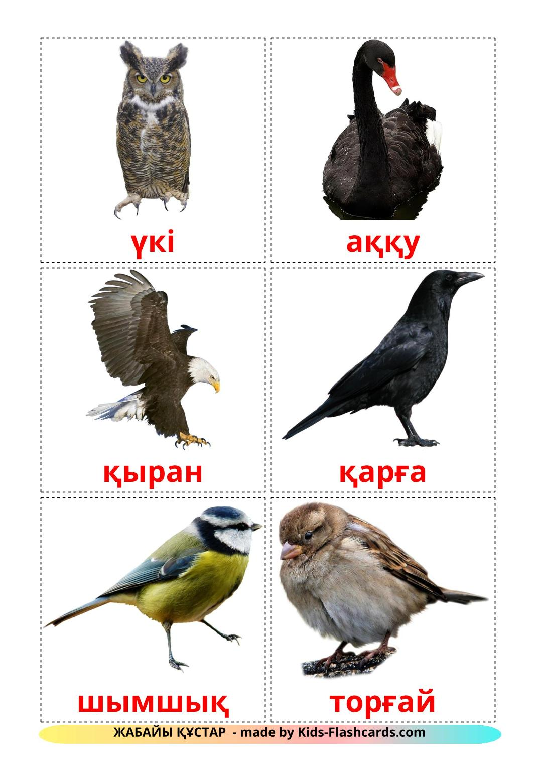 Wild birds - 17 Free Printable kazakh Flashcards