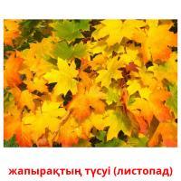 жапырақтың түсуі (листопад) picture flashcards