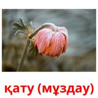 қату (мұздау) picture flashcards