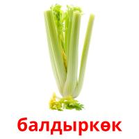 балдыркөк picture flashcards