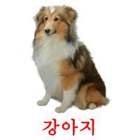 강아지 карточки энциклопедических знаний