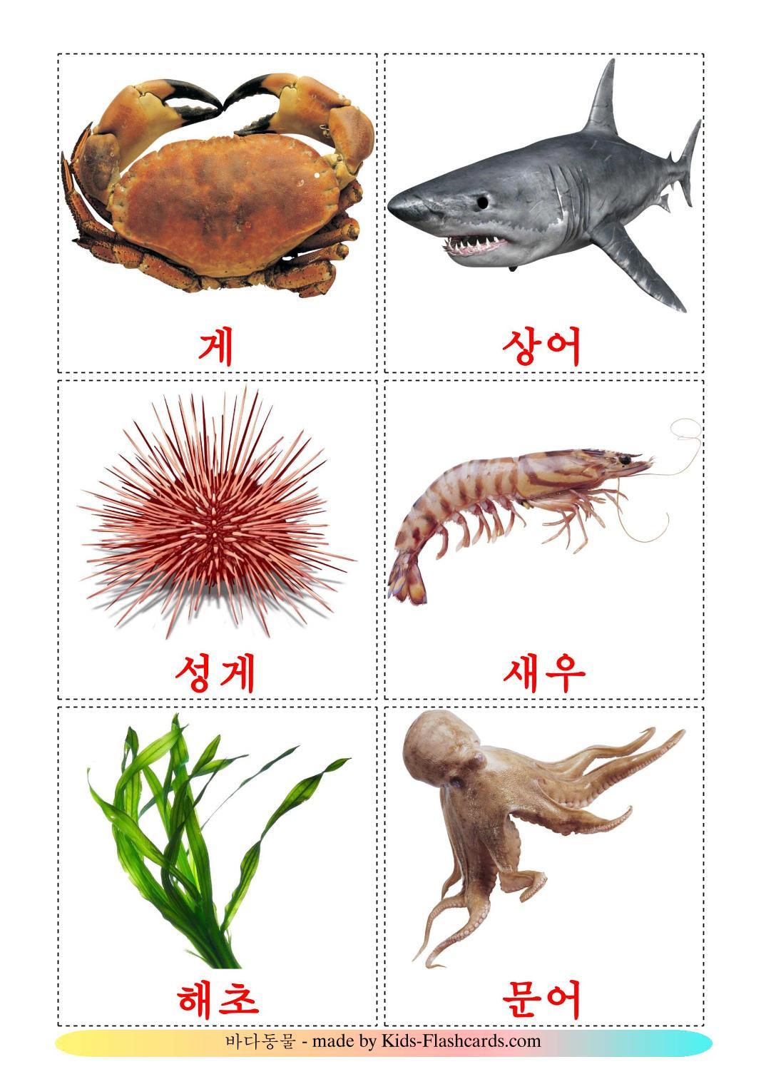 Sea animals - 29 Free Printable korean Flashcards