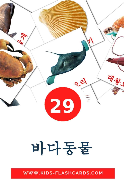 29 바다동물 Picture Cards for Kindergarden in korean