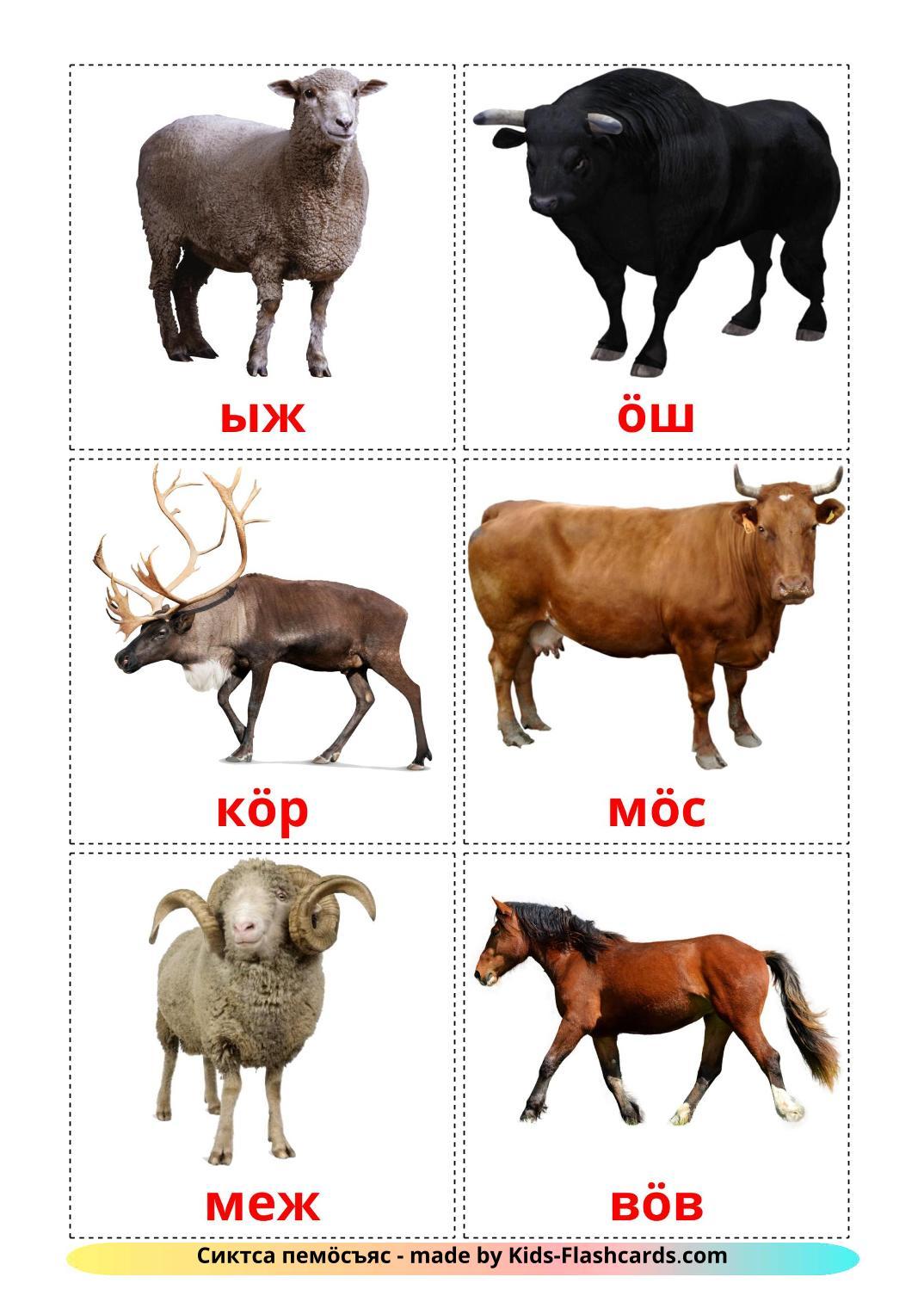Farm animals - 15 Free Printable komi Flashcards