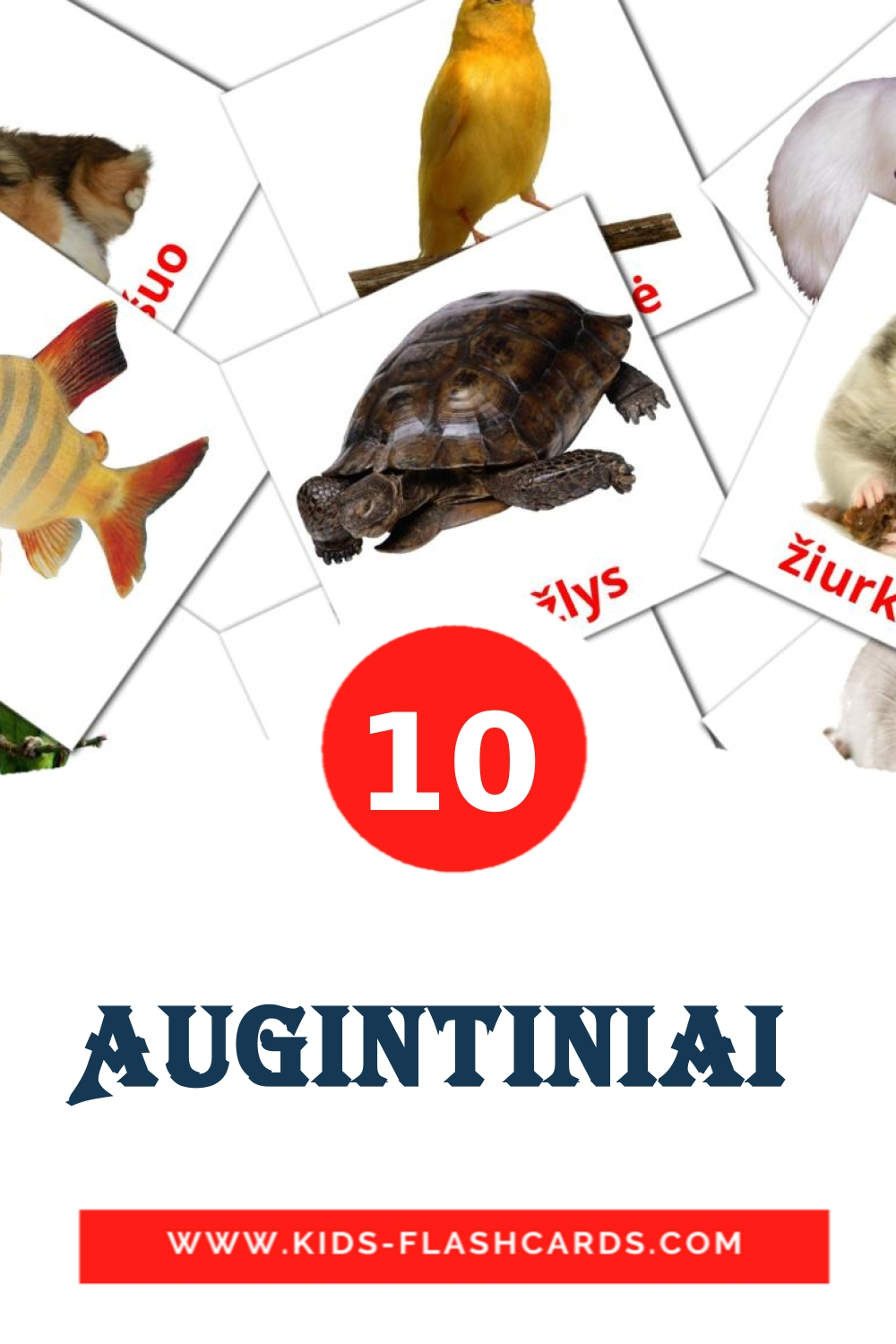 10 Augintiniai  Picture Cards for Kindergarden in lithuanian