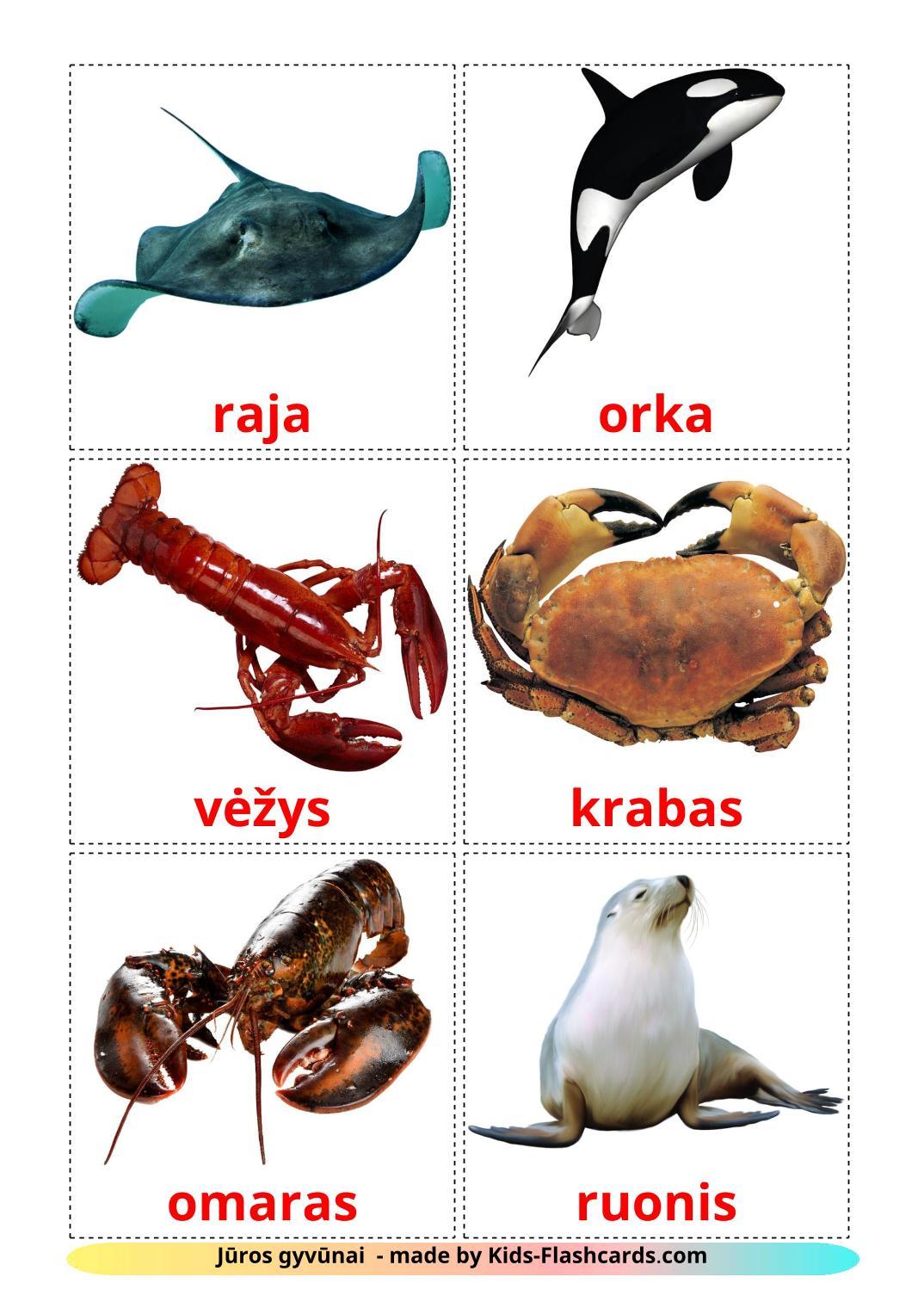 Sea animals - 29 Free Printable lithuanian Flashcards