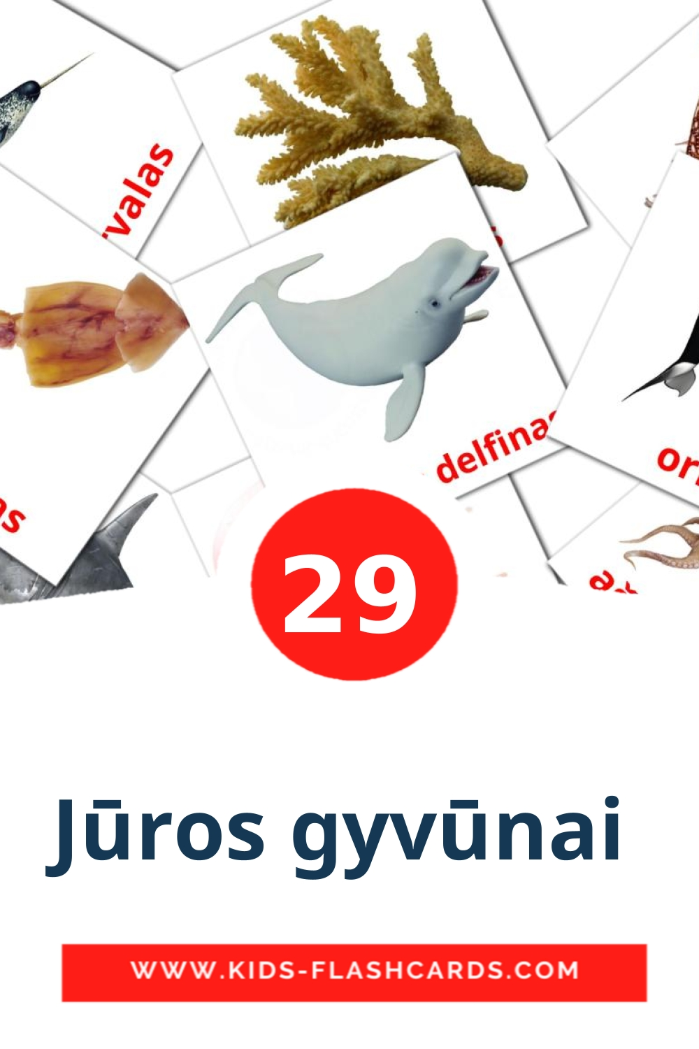 29 Jūros gyvūnai  Picture Cards for Kindergarden in lithuanian