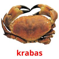 krabas picture flashcards