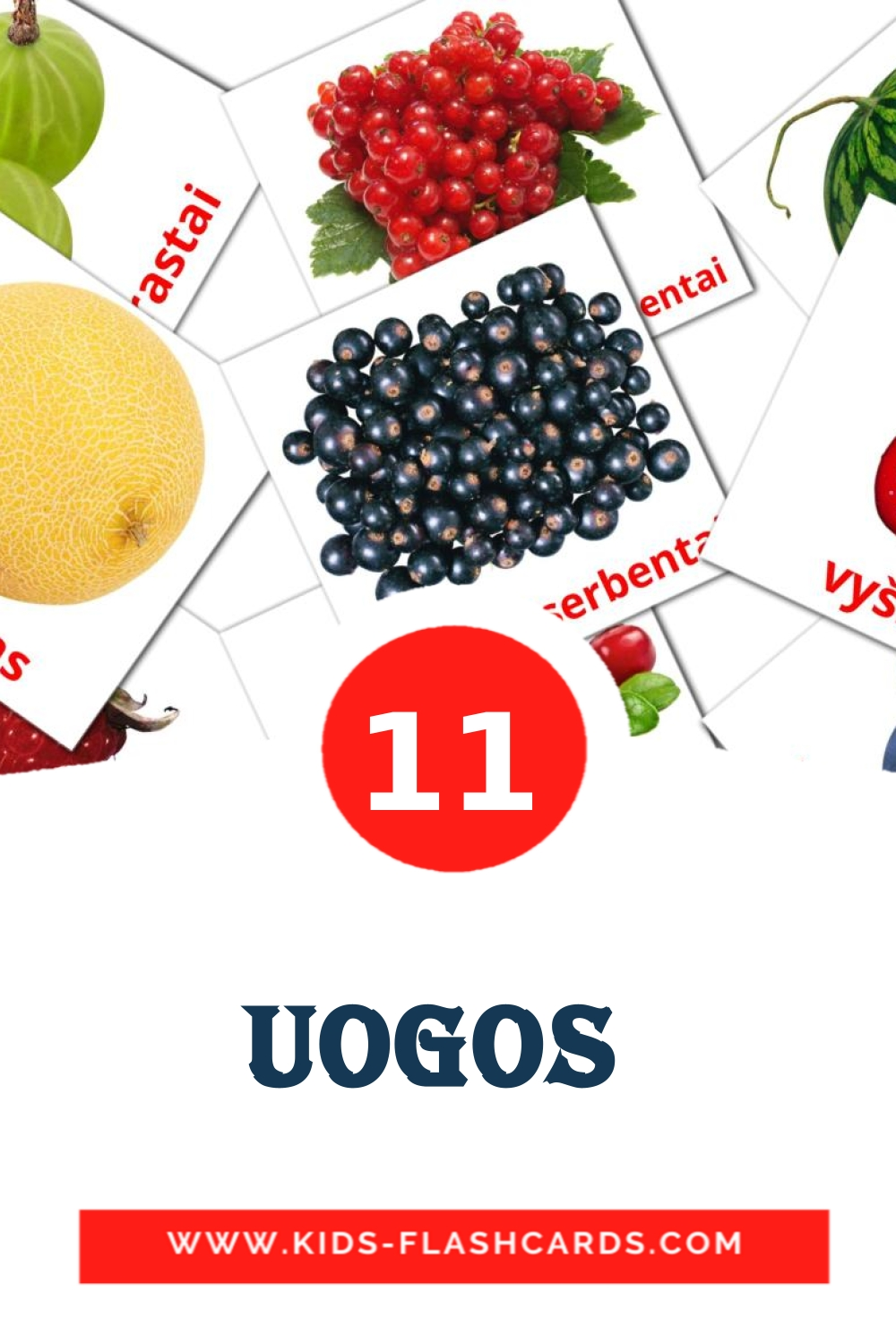 11 Uogos  Picture Cards for Kindergarden in lithuanian