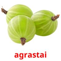 agrastai picture flashcards