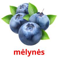 mėlynės picture flashcards