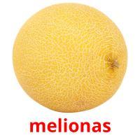 melionas picture flashcards