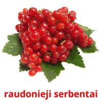 raudonieji serbentai picture flashcards