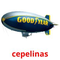 cepelinas picture flashcards