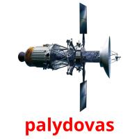 palydovas picture flashcards
