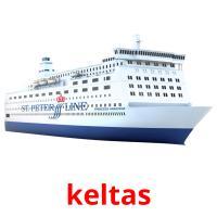 keltas picture flashcards