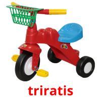 triratis picture flashcards
