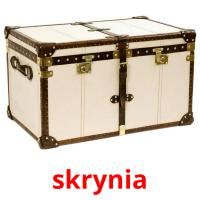skrynia picture flashcards