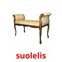 suolelis picture flashcards