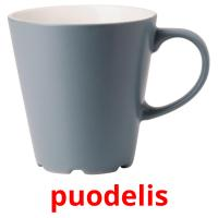 puodelis picture flashcards