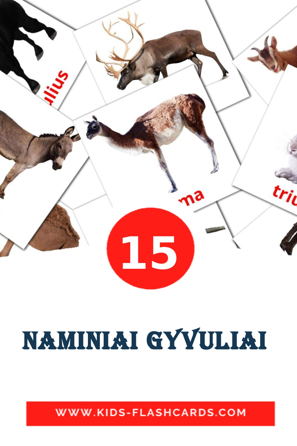 15 Naminiai gyvuliai  Picture Cards for Kindergarden in lithuanian