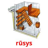 rūsys picture flashcards