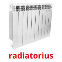 radiatorius picture flashcards