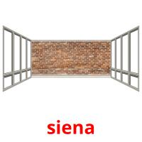 siena picture flashcards