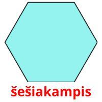 šešiakampis picture flashcards