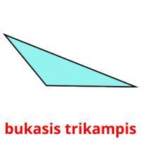 bukasis trikampis picture flashcards