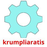 krumpliaratis picture flashcards