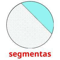 segmentas picture flashcards