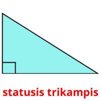 statusis trikampis picture flashcards