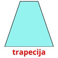 trapecija picture flashcards