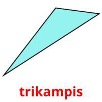 trikampis picture flashcards