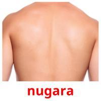 nugara picture flashcards
