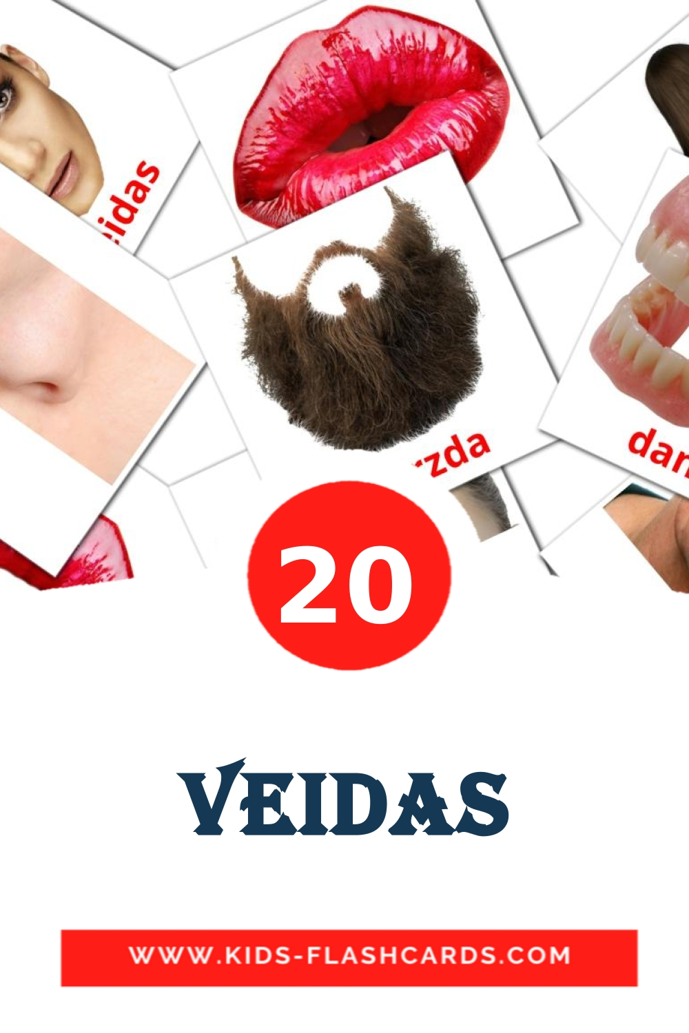 20 Veidas Picture Cards for Kindergarden in lithuanian