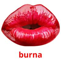 burna picture flashcards