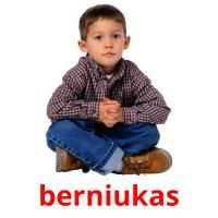 berniukas picture flashcards